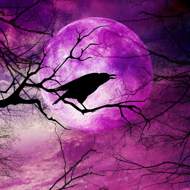 Raven Moon - Peggy Garr