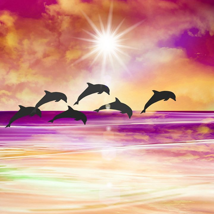 Dolphin Paradise - Peggy Garr
