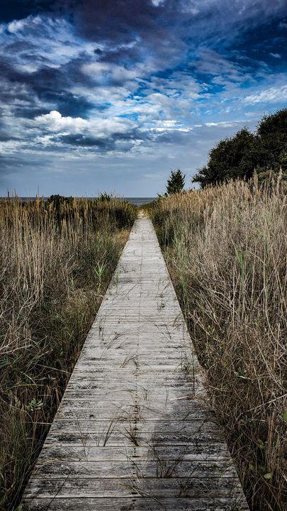 Turmoil of Absence - Jason Fedor