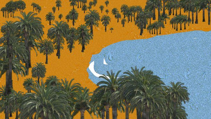 Sea Shore - Lourdes Devers Clemente