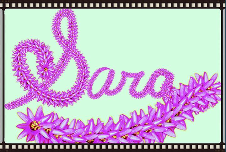 Sara - Lourdes Devers Clemente