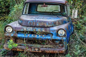A Dodge
