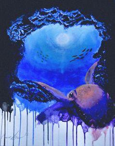 Octopus Cove