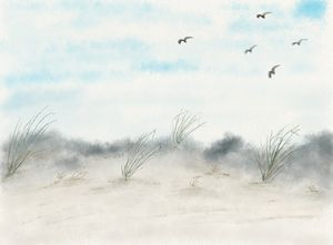 Birds over the Sand Dunes