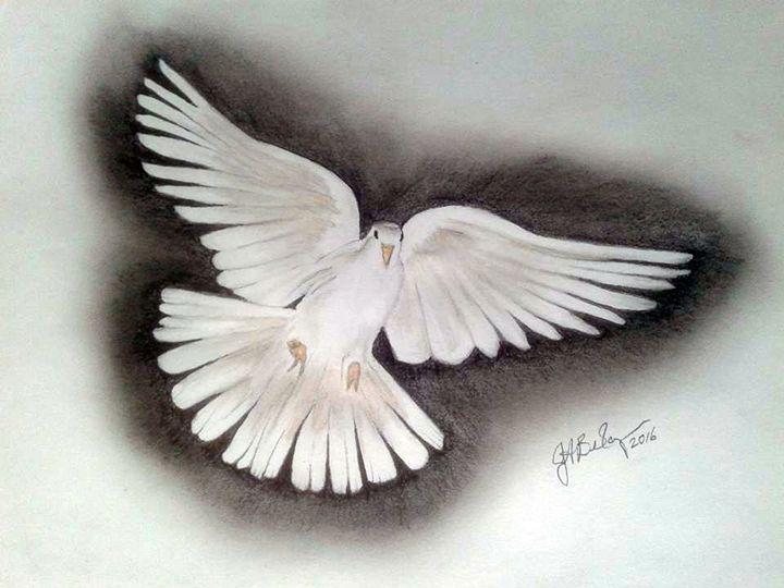 White Dove - ArtbyJosephB