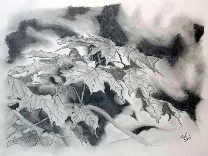 Maple Leaves - ArtbyJosephB