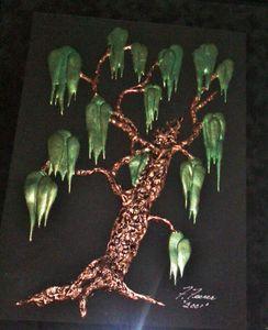 Oriental Live Oak Tree