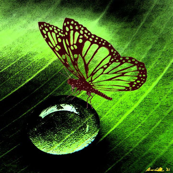 Butterfly Droplet - BC Designs