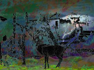 Deer in a storm