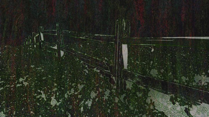 Night Fence - BC Designs