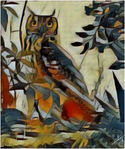 The humble owl