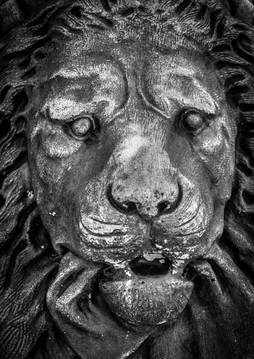 Lion Statue - Photography By Helen