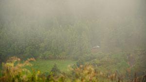 Portugal, Açores, dans la brume