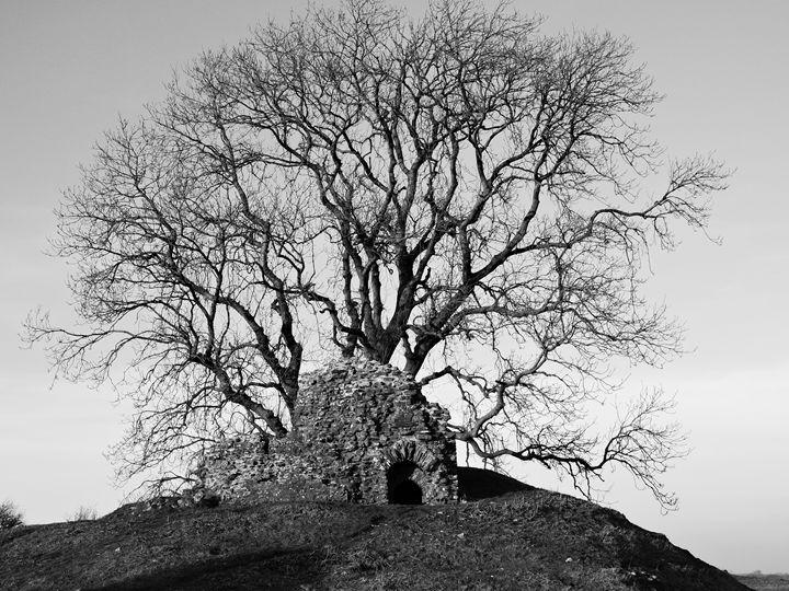Dryslwyn Castle - Anna Cartwright Photography