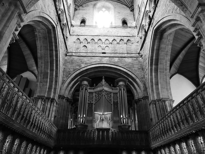Cathedral Organ - Anna Cartwright Photography