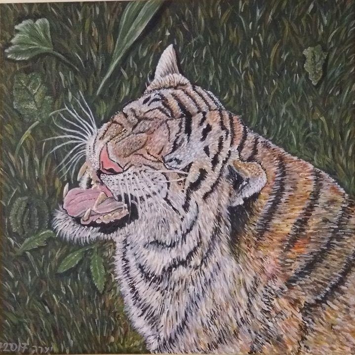 Tiger - Yaara Carco-Beyth
