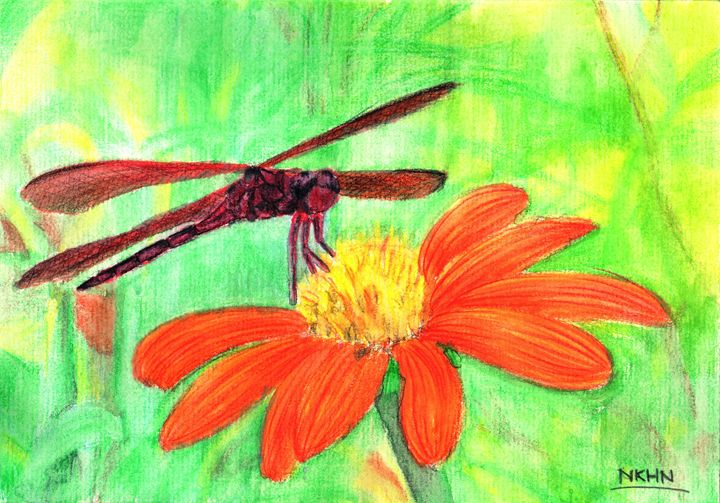 Little Dragonfly and the Wild Daisy - Nguyen Kim Hoang Nhu