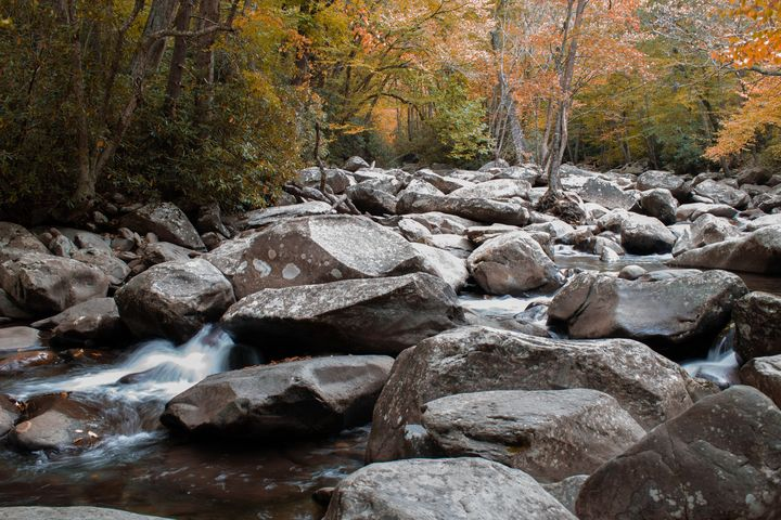 Creek in the fall - Rylan's Amazing Photography