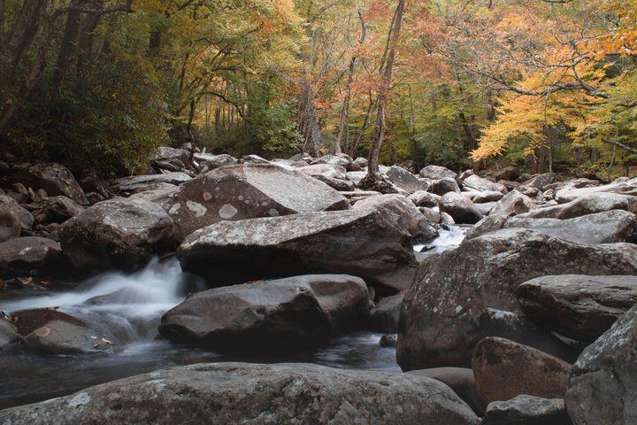 Gatlinburg Creek in the Fall - Rylan's Amazing Photography