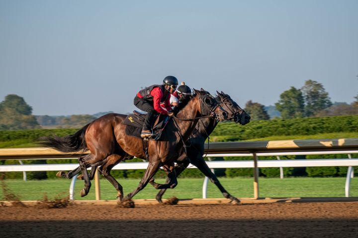 Two horses racing at Keeneland - Rylan's Amazing Photography