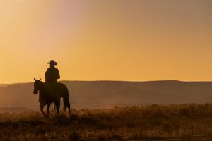 Lone Desert Cowboy Riding At Sunrise - Steve Gadomski