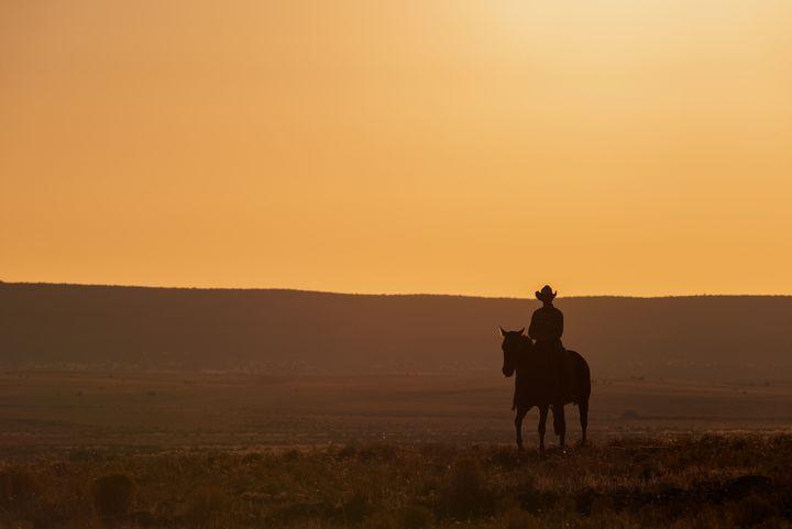 Lone Desert Cowboy - Steve Gadomski