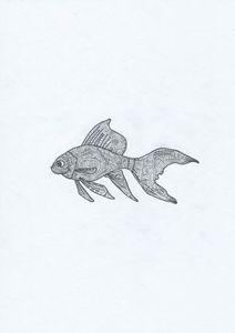 Fish Doodle Art