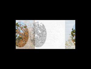 untitled-1/100th t-b rvb y.f.02 da
