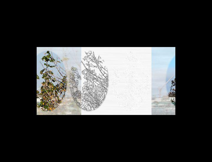 untitled-1/100th t-b rvb y.f.03 da - Toshiaki