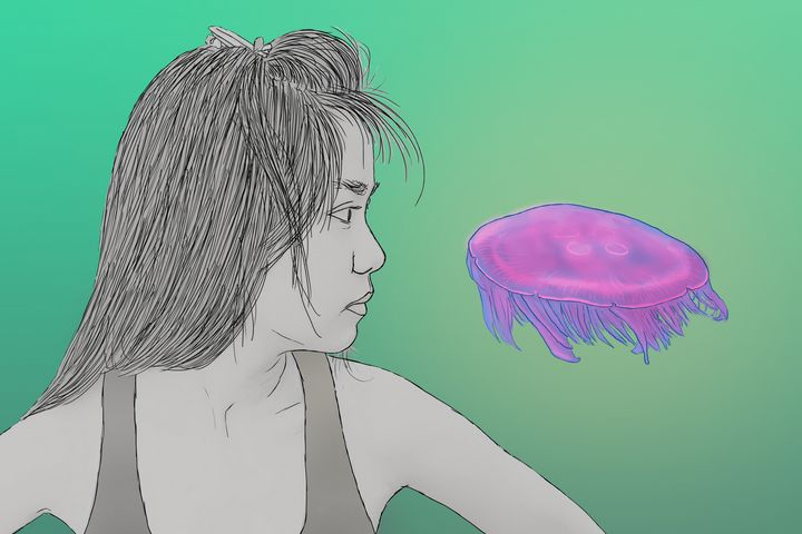 jelly - Pedro Hafermann