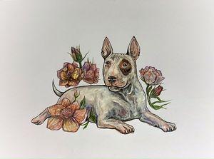 Bull terrier chilling in flowers