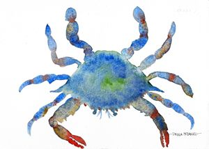 Blue Crab - Art by Paula Hall