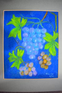 Grapes - Maple street arts