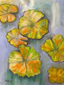 Waterlillies - Maple street arts