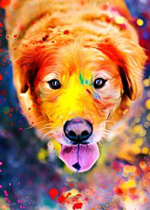 Bert's got into the paints again... - Phoenix Art Works
