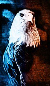 Eagle Eye - Phoenix Art Works