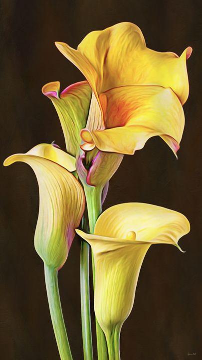 Mini Calla Lillies - Phoenix Art Works