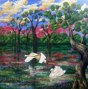 Swan Heaven