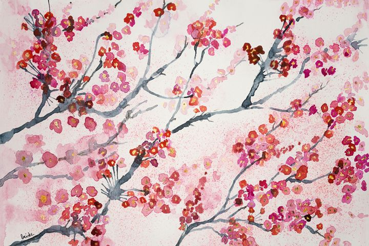 Branches of cherry blossoms. - BRISTE