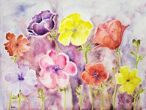 Wild anemones. - BRISTE