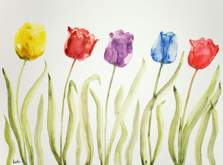 Five tulips of different color - BRISTE