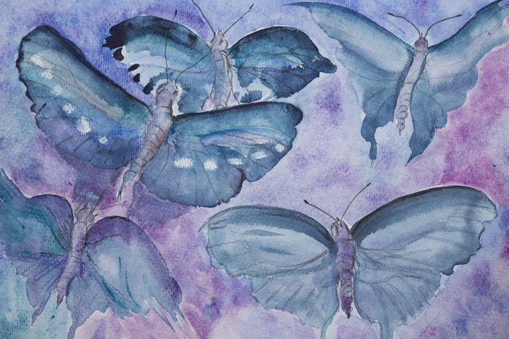 Turquoise butterflies on a liliac ba - BRISTE