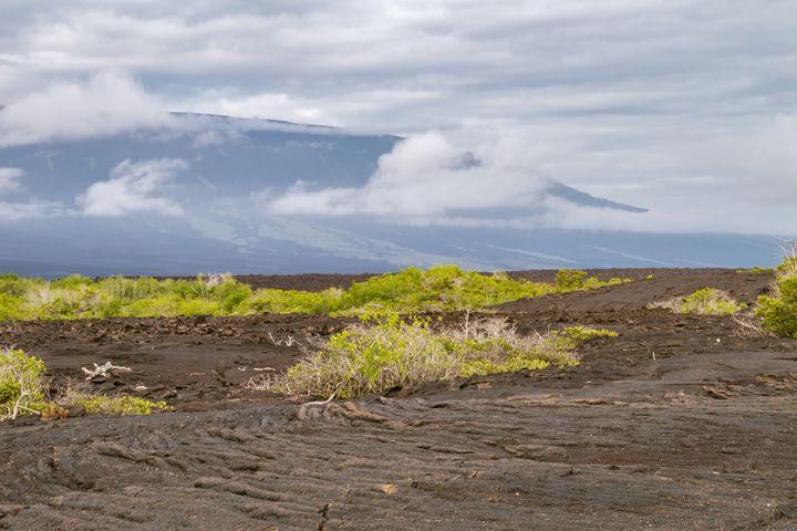 Ropy pahoehoe lava field - BRISTE