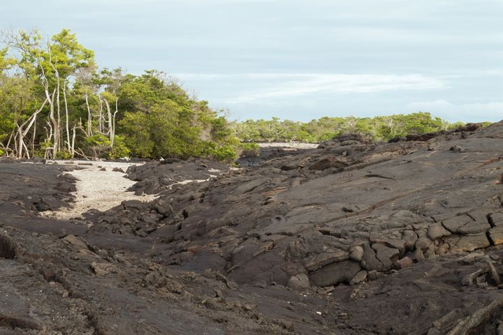 Lava field with some sand  on Fernan - BRISTE