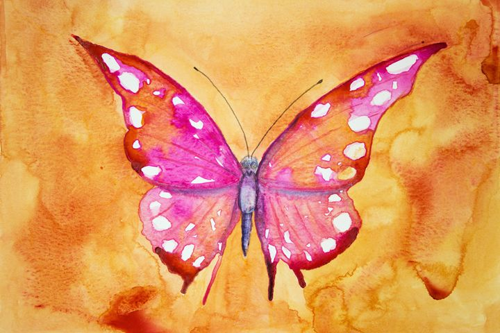 Pink butterfly with orange backgroun - BRISTE