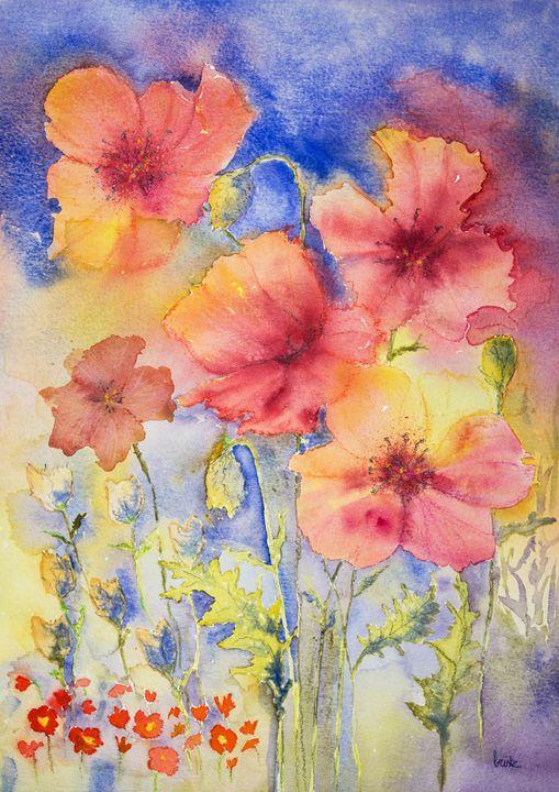 Poppies in the sun. GVP1519 - BRISTE