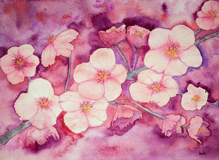 Cherry blossoms in warm pinkish colo - BRISTE