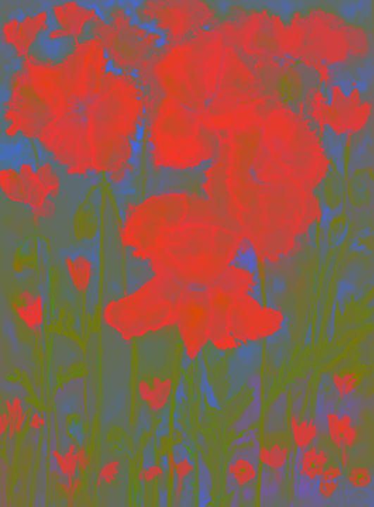 Vague dream of poppies.  gvp1538 - BRISTE
