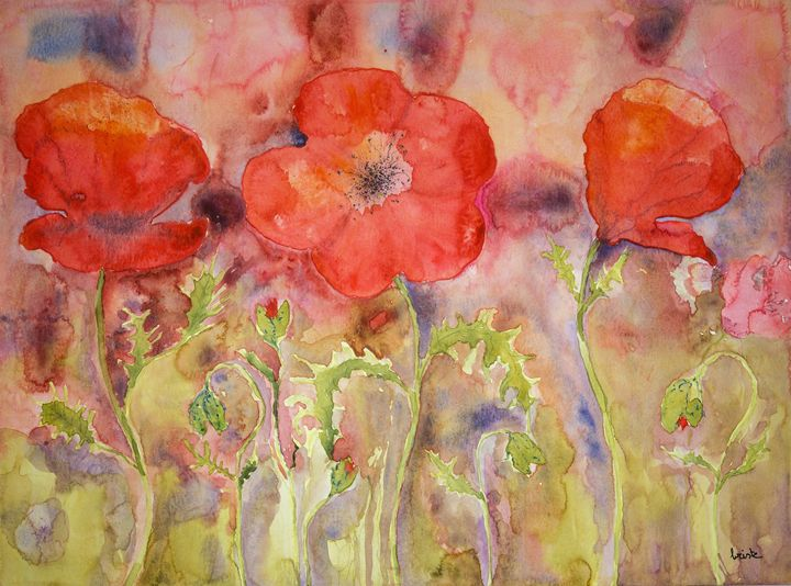 Three poppies in a field. gvp1539 - BRISTE