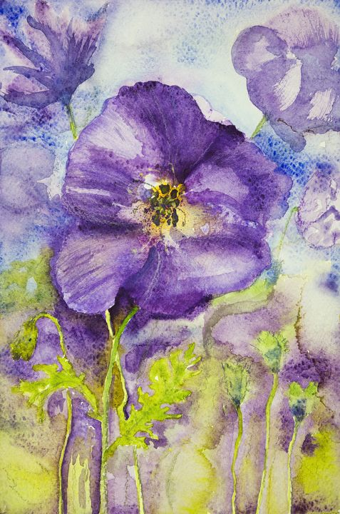 Impression of violets in a field. - BRISTE